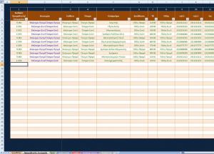 3ο στιγμιότυπο από το Excel Παρακολούθηση Έργων